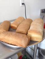 il pane 3