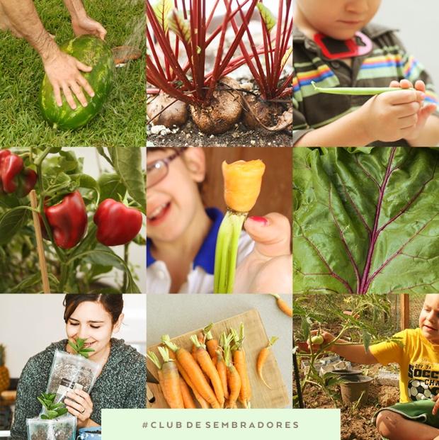 collage club de sembradores.jpg