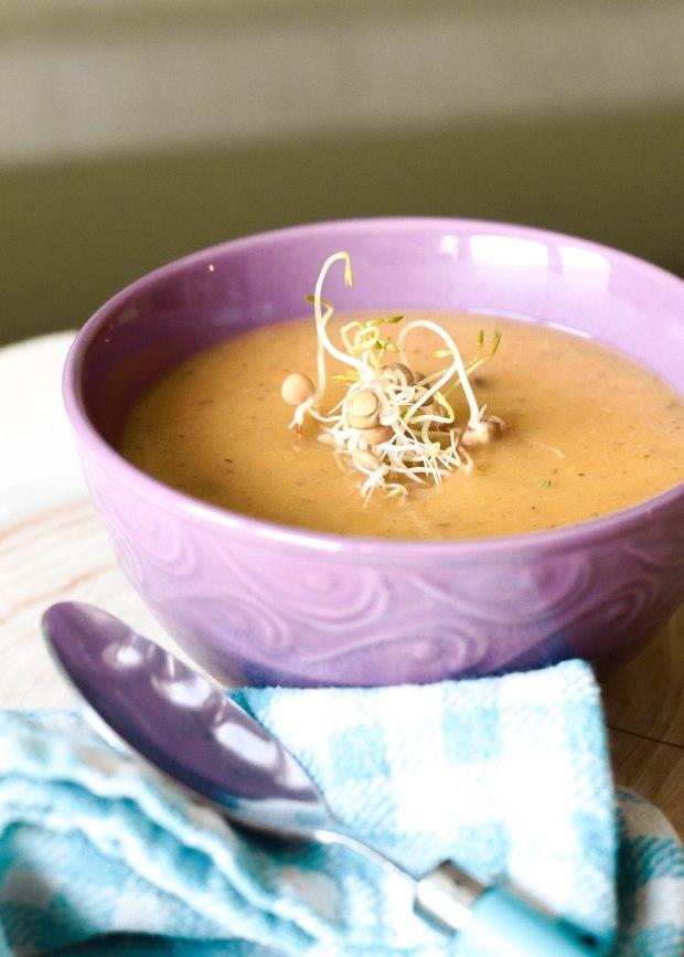 crema de zanahoria y germinados (1 of 1)-2